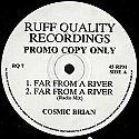 COSMIC BRIAN / FAR FROM A RIVER