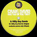 CRAIG DAVID / ARE YOU UP FOR THIS?