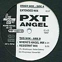 PXT / ANGEL