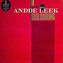 ANDDE LEEK / SOUL DARLING